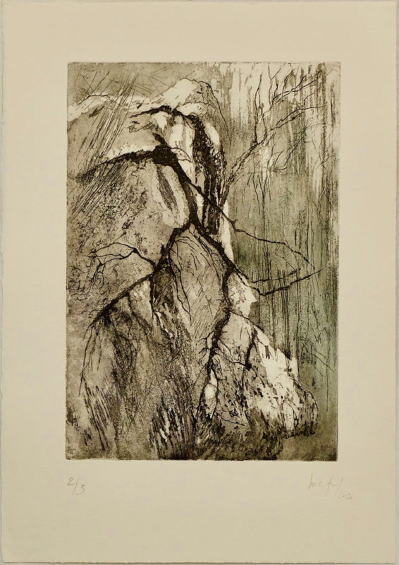 Broye - Marie Claude Gardel - L'Alice Edition