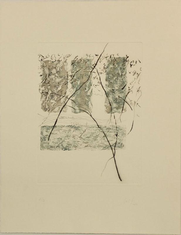 Sans titre - Marie Claude Gardel - L'Alice Edition